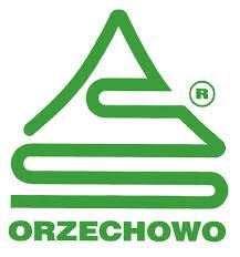 logo sklejka